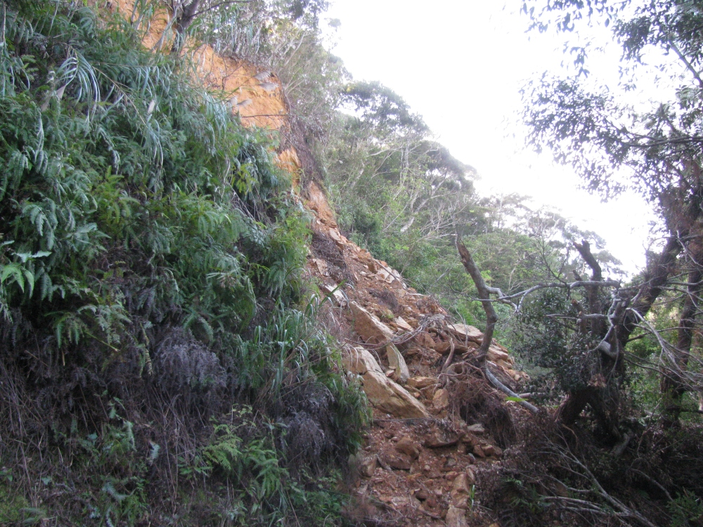 Landslides: A real danger in some parts of Okinawa (2/5)